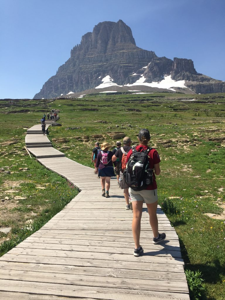 Logan Pass Trail