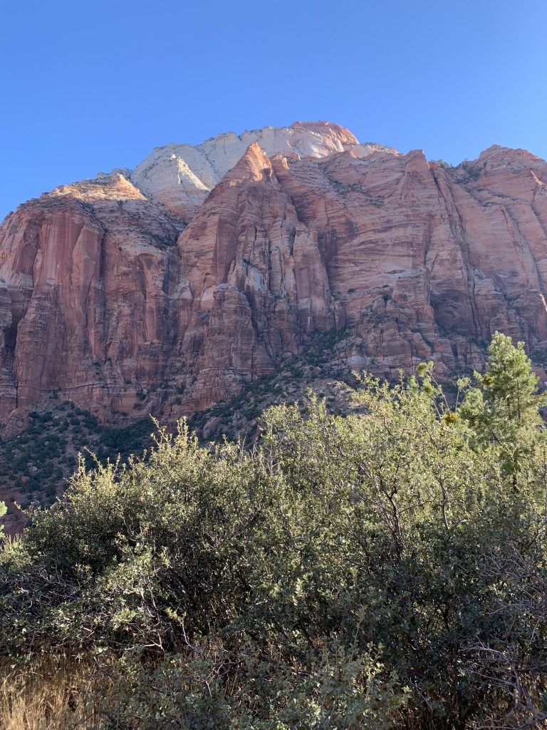 Navajo Sandstone in Zion