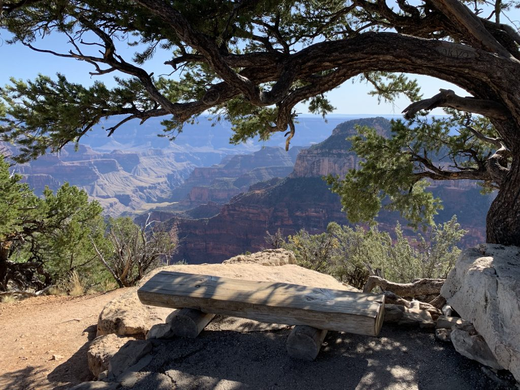 Bench near Bright Angel Point