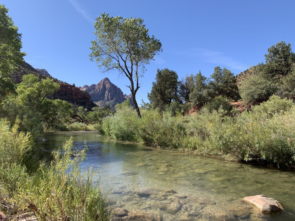 Gorgeous Zion Canyon
